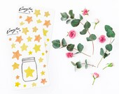 Yellow Star tracker Stickerset-watercolor sticker-pretty planning-scrapbooking-bullet journaling