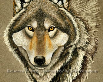 Gray Wolf Pastel Portrait Grey Wolf Timber Wolf Wildlife Giclée Fine Art Print