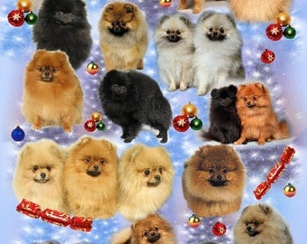 Pomeranian Dog Christmas Gift Wrapping Paper.