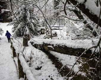 Snow Stream - Traditional Photography Print