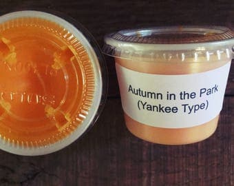 Autumn In the Park (Yankee Candle Type) 1 oz. Wax Melt