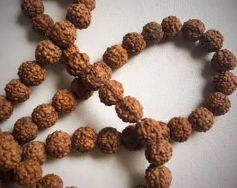 10 beads of rudraksha seeds