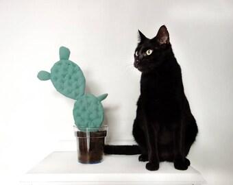 Cactus Ears