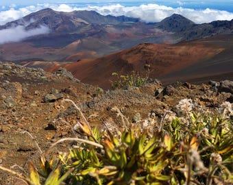8x10 Haleakalā National Park