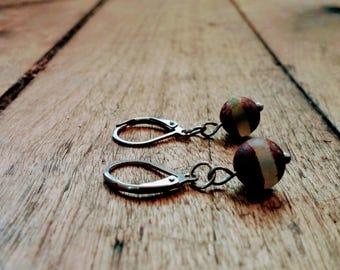 Earrings with beautiful agate gemstones.