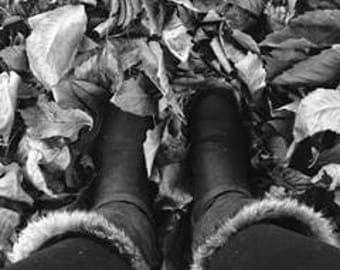 Autumn Leaves - Monotone -