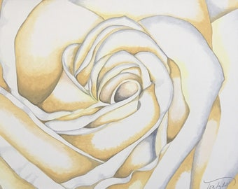 White Rose Original Painting