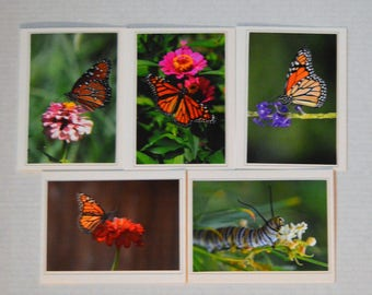 5 Fine Art Monarch Greeting Cards, Monarch Notecard Set, Monarch Stationary, Handmade Photo Notecards