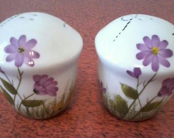 Chubby Beehive Salt and Pepper with Flower design.
