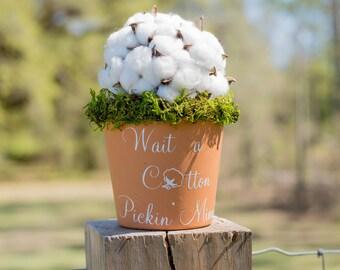 Cotton Pickin' Minute