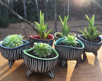 Modern Carved Freeform Tripod Bowl succulent Planter