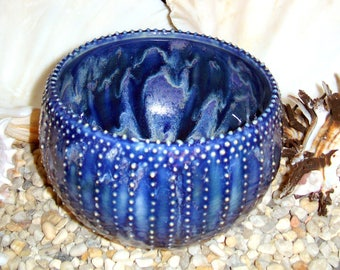 Sea Urchin spine textured bowl in cobalt blue, indigo purple and light white pink frost Cats love it too