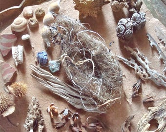 Nature Mix Seed Pods, Shells, Wood, Bone, Bird Nest, Cactus Skeleton Craft Jewelry Supply Found Objects