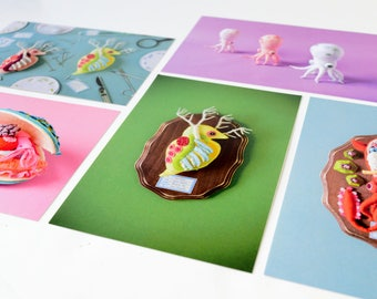 5 Postcard Set: Specimen collection - squid octopus daphnia clam anatomy lab biology photography toy blue pink craft art HineMizushima