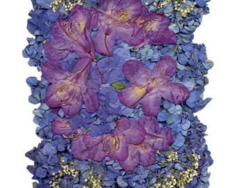 "5x7 Greeting Card ""Dried Flowers 7"""