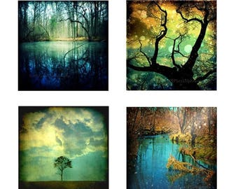 50% OFF SALE Nature Photography Woodland Forest Trees Set 4 Four Art Prints Teal Dark Blue Gold Home Decor Photography 8x8 Print Pack - Ench