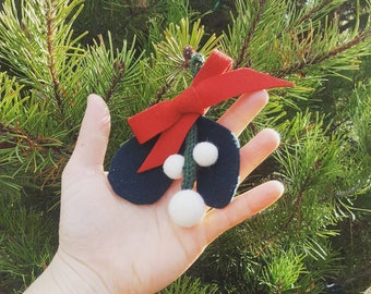 woolly mistletoe for hanging and kissing