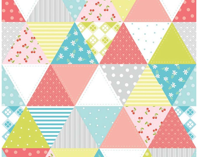Glamping fabric, Fabricshoppe GlamperLicious fabric, Camping Camper Aqua Fabric, Camp Hike Vintage Camper Riley Blake, Quilt in Gray