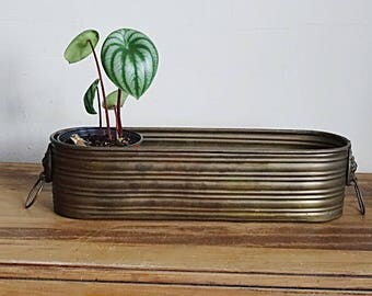 Long Brass Planter Windowsill Lions with Rings