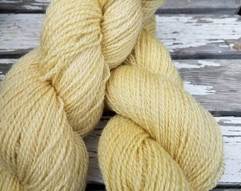 Hand dyed DK weight wool yarn dyed with Tansy