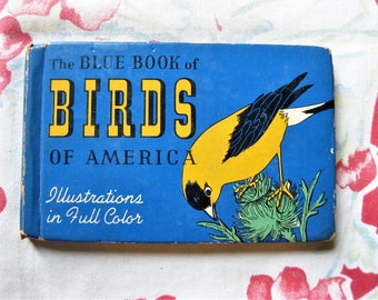 Vintage 1931 The Blue Book of Birds of America, 1931, Whitman Publishing, Small Pocket Bird Guide