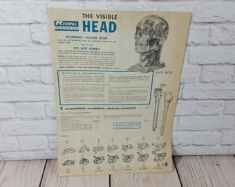 Vintage Visible Man and Visible Head Instruction Sheet