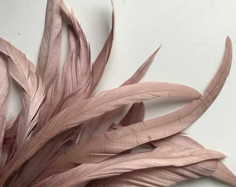 COQUE TAIL FEATHERS Loose / Ashy Vintage English Rose Pink / 179