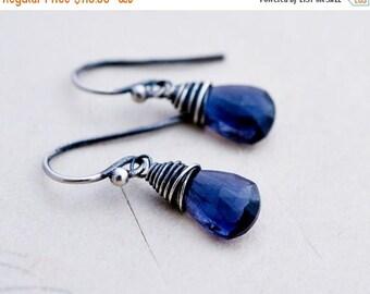 Summer Sale Iolite Earrings, Drop Earrings, Drop Earrings, Sterling Silver, Blue Gemstone, Silver Earrings, PoleStar, Indigo, Crystal Earrin