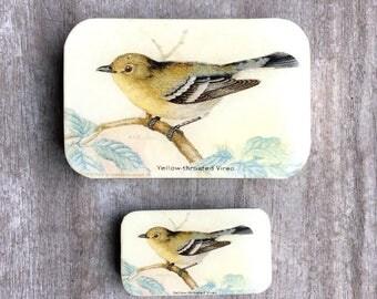 Yellow Bird Pill Box LARGE, Notions Tin, Wallet