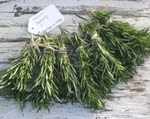 "100 Rosemary Wedding Favors Fresh Harvest ROSEMARY sprigs Organic / Fragrant 3 "" / DIY Wedding Invitations Rustic Wedding Settings/ Reserve"