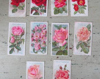 Smell The Roses -  Vintage Cigarette Cards of Roses - Set of 10 - Wills's. - 1930's - Set #4