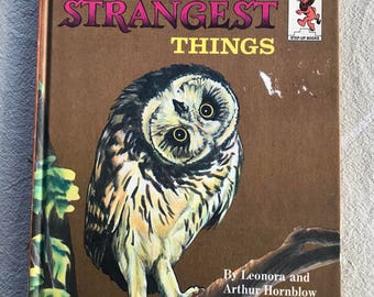 Birds Di the Strangest Things - Vintage Children's Books