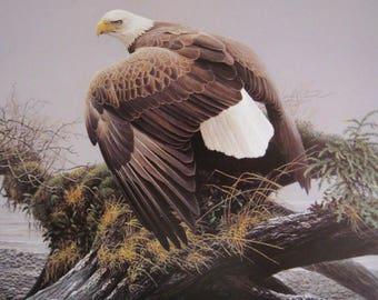 Vantage Point - Bald Eagle - Original Page from 1983 Book - The Art of Robert Bateman