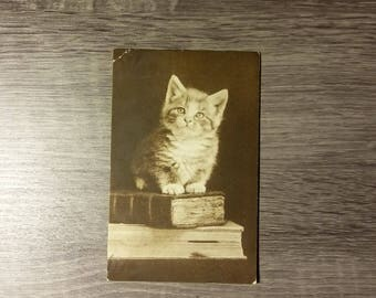 Antique kitten on books postcard with 1916 Castlerock, WA postmark and 1-cent Benjamin Franklin postage stamp