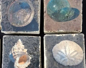 Sea Shell Stone Coasters - Beach Decor Seashell Coasters - Abalone Sea Shell Coasters - Sanddollar Coasters - Japanese Glass Fishing Float