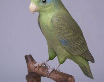 "5"" Celestial Parrotlet  Hand Carved Wooden Bird"