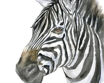 Zebra Watercolor - 18 x 24 - Large Poster - African Wildlife Art Print