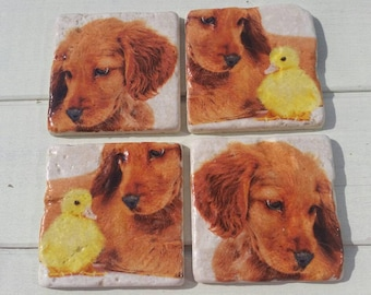 Puppy and Chick Set of 4 Tea Coffee Beer Coasters