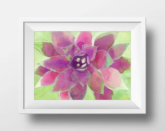 Purple Succulent Print from Original Watercolor