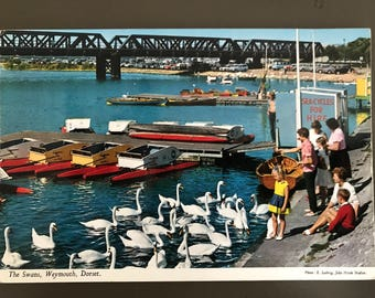 Vintage 1970s Postcard - The Swans, Weymouth, Dorset