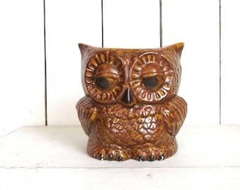 Owl Planter Pot - Ceramic Planter Vase - Vintage Sleepy Owl Pot - Retro 1970s Home Decor