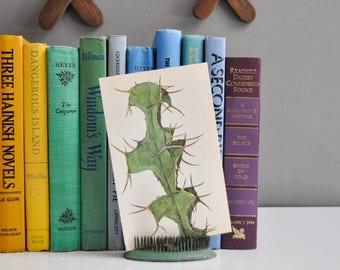 Vintage Petite Spiky Cactus Book Plate
