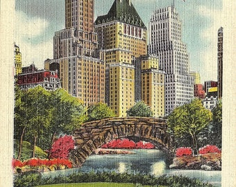 Fifth Avenue, Hotels, Buildings, Plaza, Central Park, New York City, New York - Vintage Postcard - Postcard - Unused (B1)