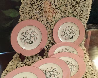 Bread and Butter Plates HOMER LAUGHLIN CAVALIER Springtime Cream Floral Bouquet Pink Border