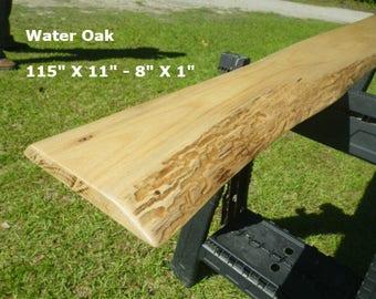 FINISHED Water Oak Live Edge Shelf, Tree Slice Slab Ready For Use, Natural Edge Shelving, Wooden Book Shelf, Artistic Bar Top 9036