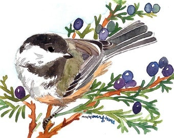 ACEO Limited Edition 1/25 -Chicakdee in cedar, Chickadee, Bird print, Art print of an original ACEO watercolor painted by Anna Lee