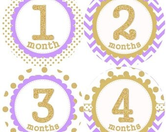 Baby Monthly Milestone Growth Stickers Gold Glitter Laveder Dots Chevrons Nursery Theme MS949 Baby Shower Gift Baby Photo Prop