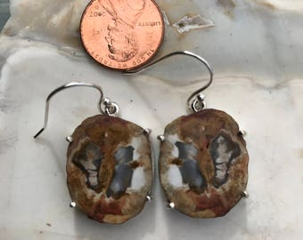 RARE Blu Forest Petrified Wood Silver Wrapped Earrings