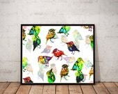bird art print / nature a...