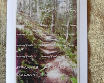 Photo Note Card, Forest Trail, woodland style, forest wall art, hiking trail art, cabin decor, Fine Art Photography by HikingTrails